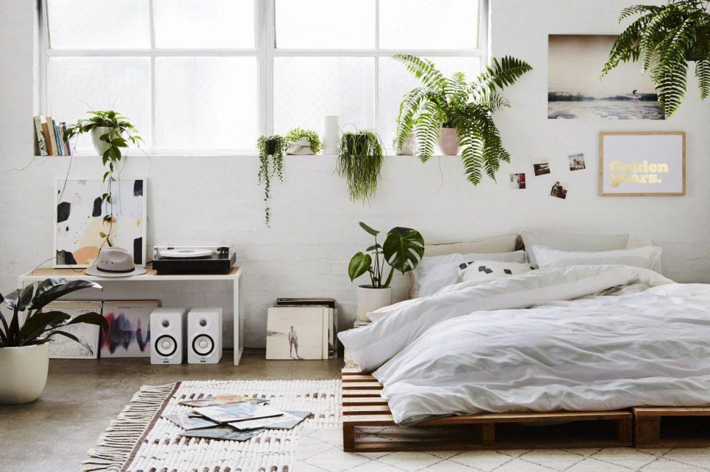 10-ต้นไม้ปลูกในห้องนอนได้